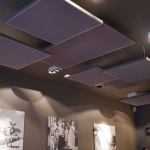 Dropped accoustic ceiling panels